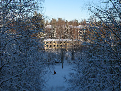 Winter in Maunula